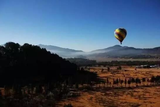 11月17日腾冲瑞丽金色银杏之旅