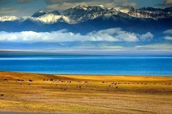 大美新疆环线房车+自驾游,伊犁薰衣草、赛里木湖、那拉提草原、独库公路美到令人窒息,摄影师全程随行跟拍,记录你的美