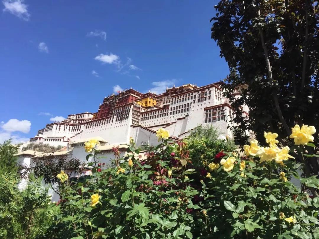 西藏活动召集丨7月27日重温经典路线:川进青出自驾15日