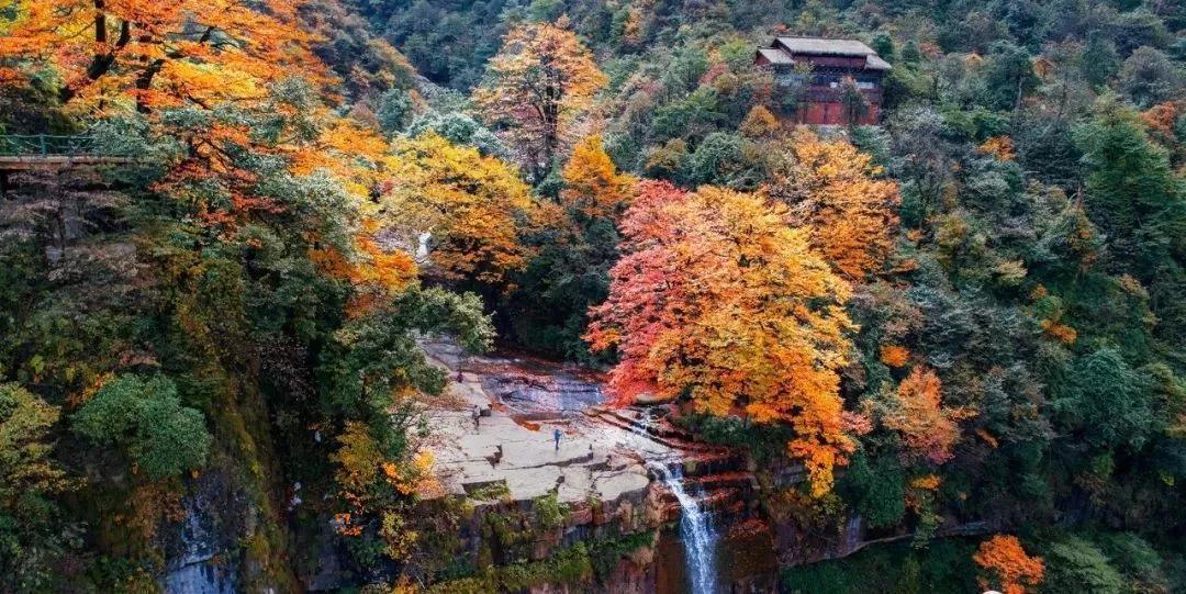 11月6日小草坝2日自驾:行走在小草坝五彩缤纷的世界里,感受小溪,彩林带来清爽