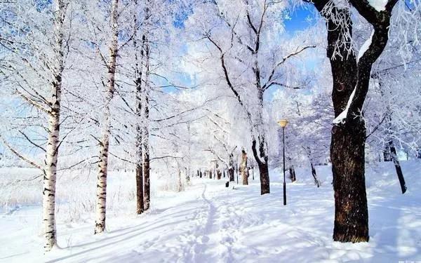 1月18日活动召集:鹧鸪山冰雪的世界,带上孩子一起去看粉红色的雪2日自驾